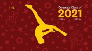 Gold silhouette of dancer doing a flip in front of festive cardinal background